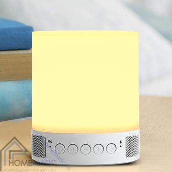 Loa Bluetooth có đèn D052