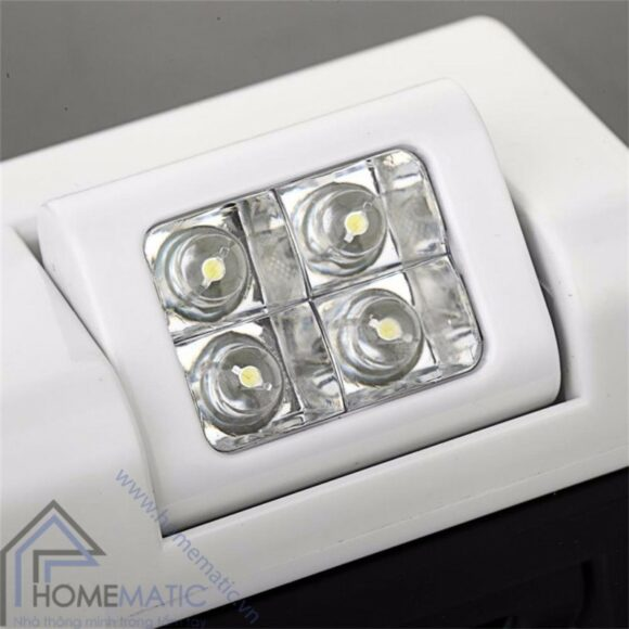 HM-DL0810 den LED